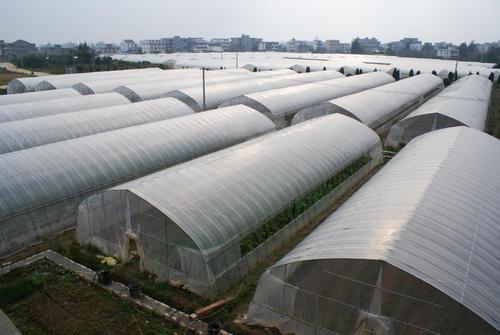 添加了塑料防雾剂的大棚膜与普通大棚膜有什么区别?