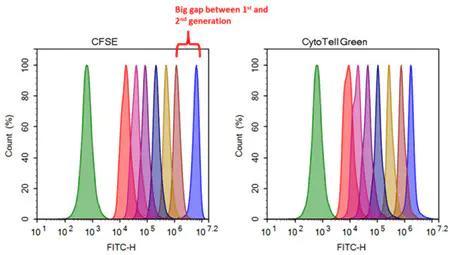 荧光染料亮度怎么进行比较?